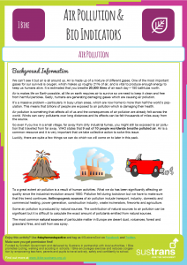 Air Pollution & Bio Indicators Worksheet (click to open)